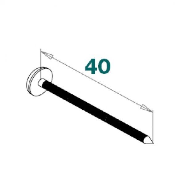 Visuel Clous Inox à Tête PVC 40 x 2 mm Blanc