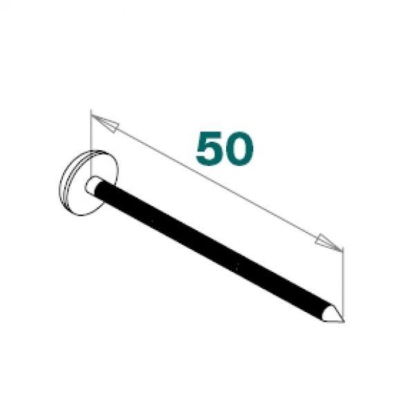 Visuel Clous Inox à Tête PVC 50 x 2,5 mm Blanc