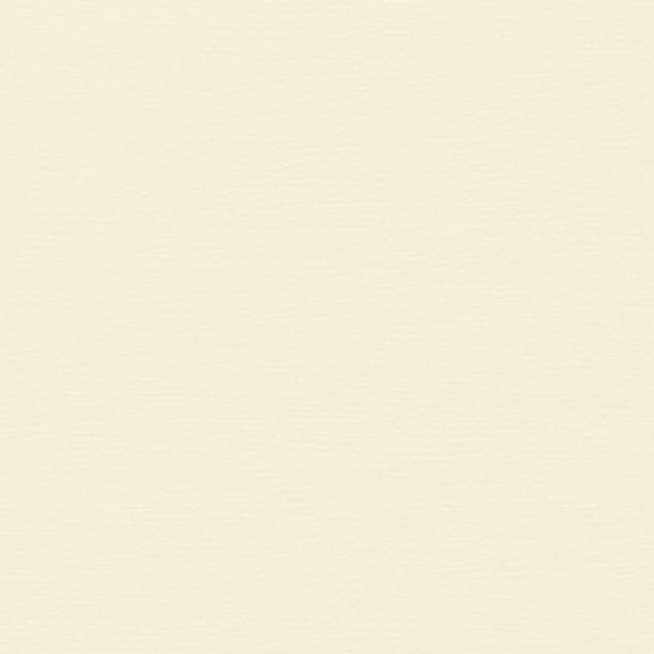 Visuel Bardage PVC Alvéolaire Vinyplus® Élégie Aspect Bois Crème - 4 x 6 ml